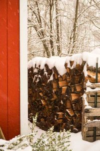 wood pile in the snow