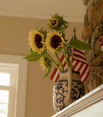 white nite pro cut sunflowers in blue and white pitcher on fireplace mantle