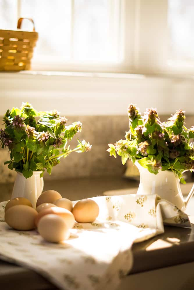 countertop below window with small white creamers with purple weeds, brown eggs laying on floral tea towel