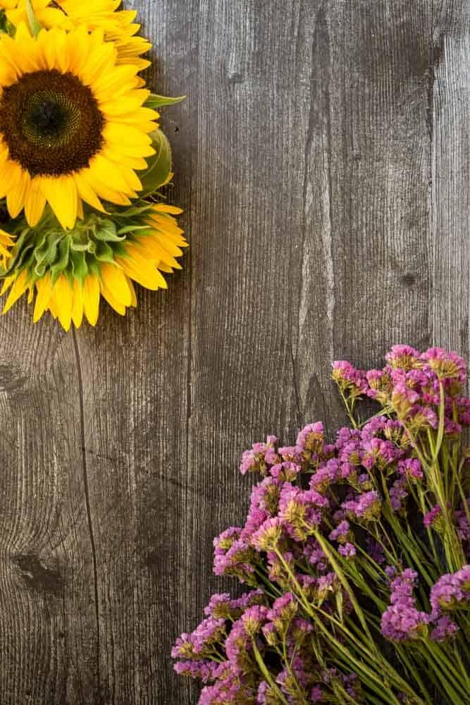 """orange """"excel"""" sunflower and blue statice on dark wooden background"""