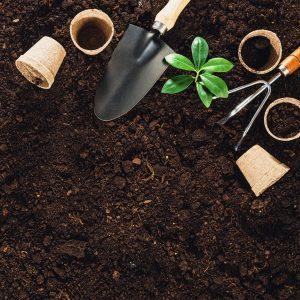 gardening tools in soil