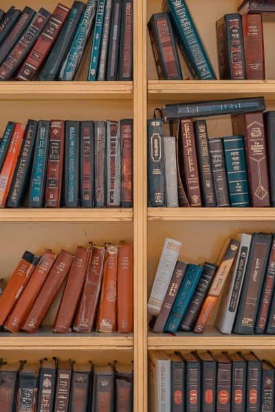 wooden bookshelf with many books