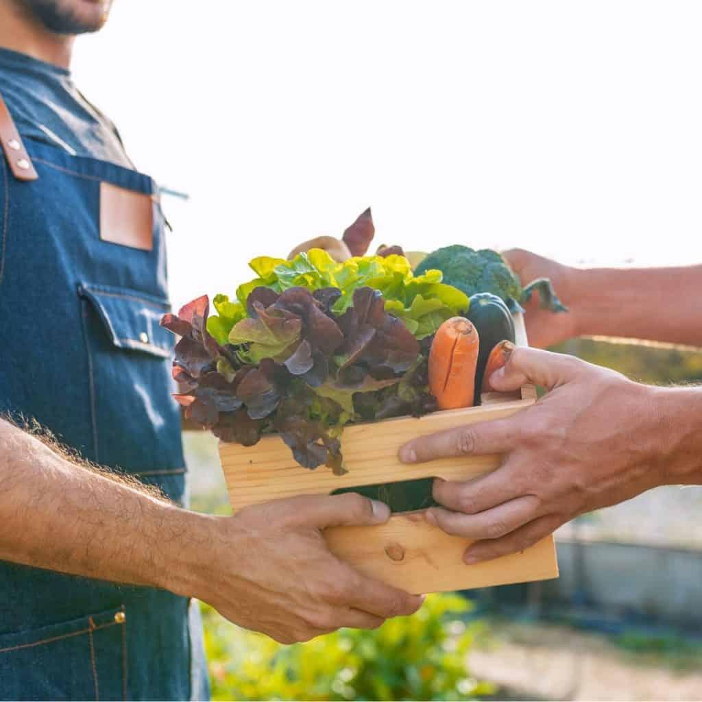 farmer passing on box of vegetables