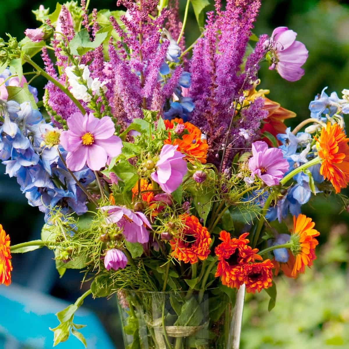 old fashioned bouquet of garden flowers