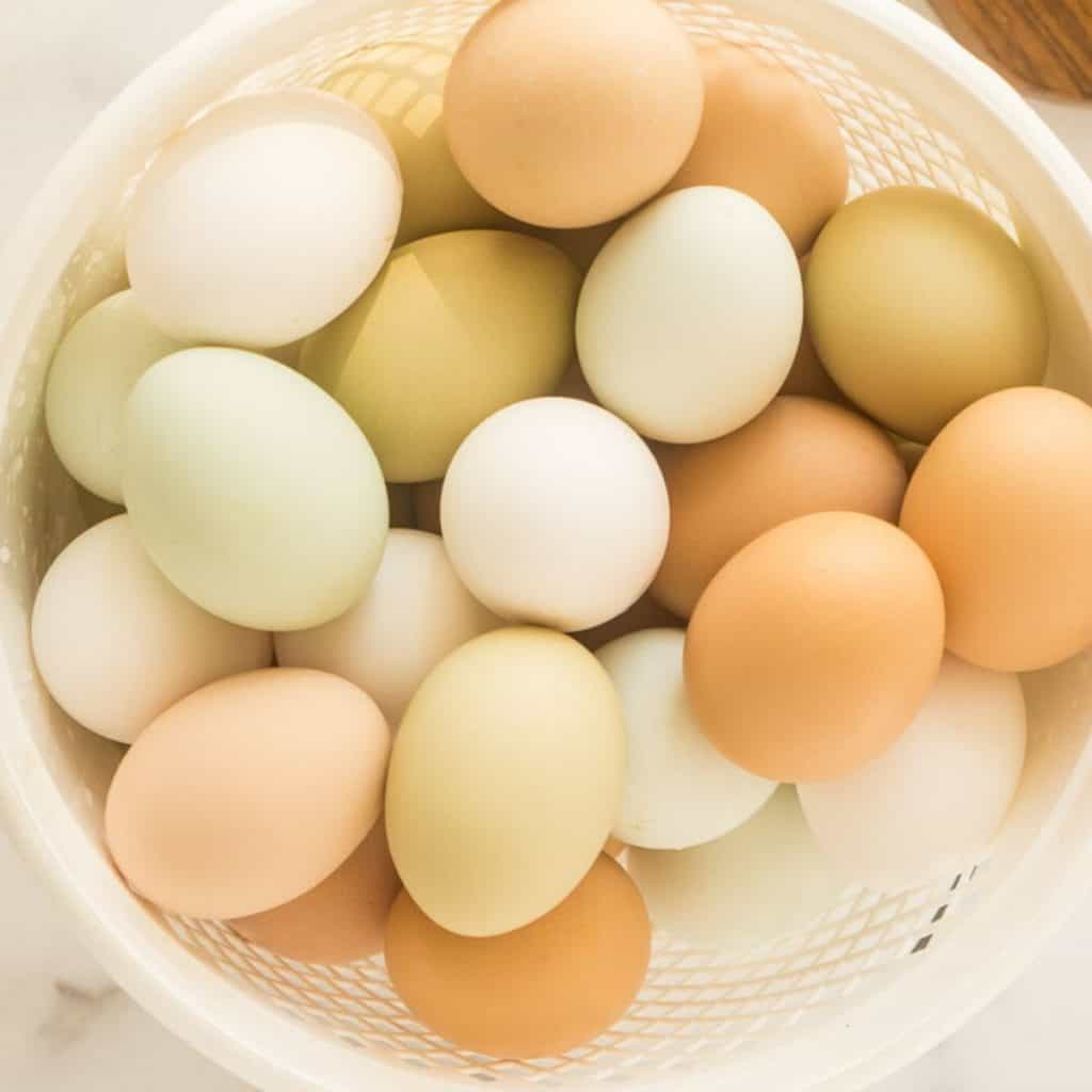 white, blue, green, brown, and olive eggs in white basket