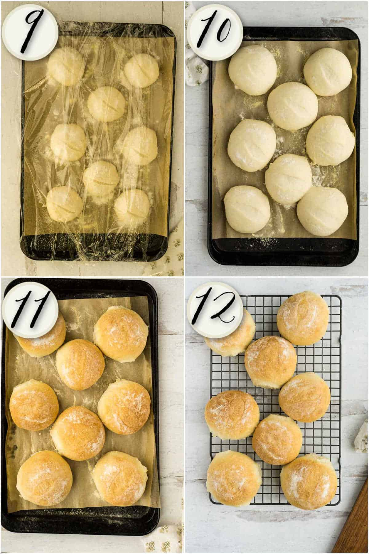 risen rolls. fully baked, and cooling sandwich rolls