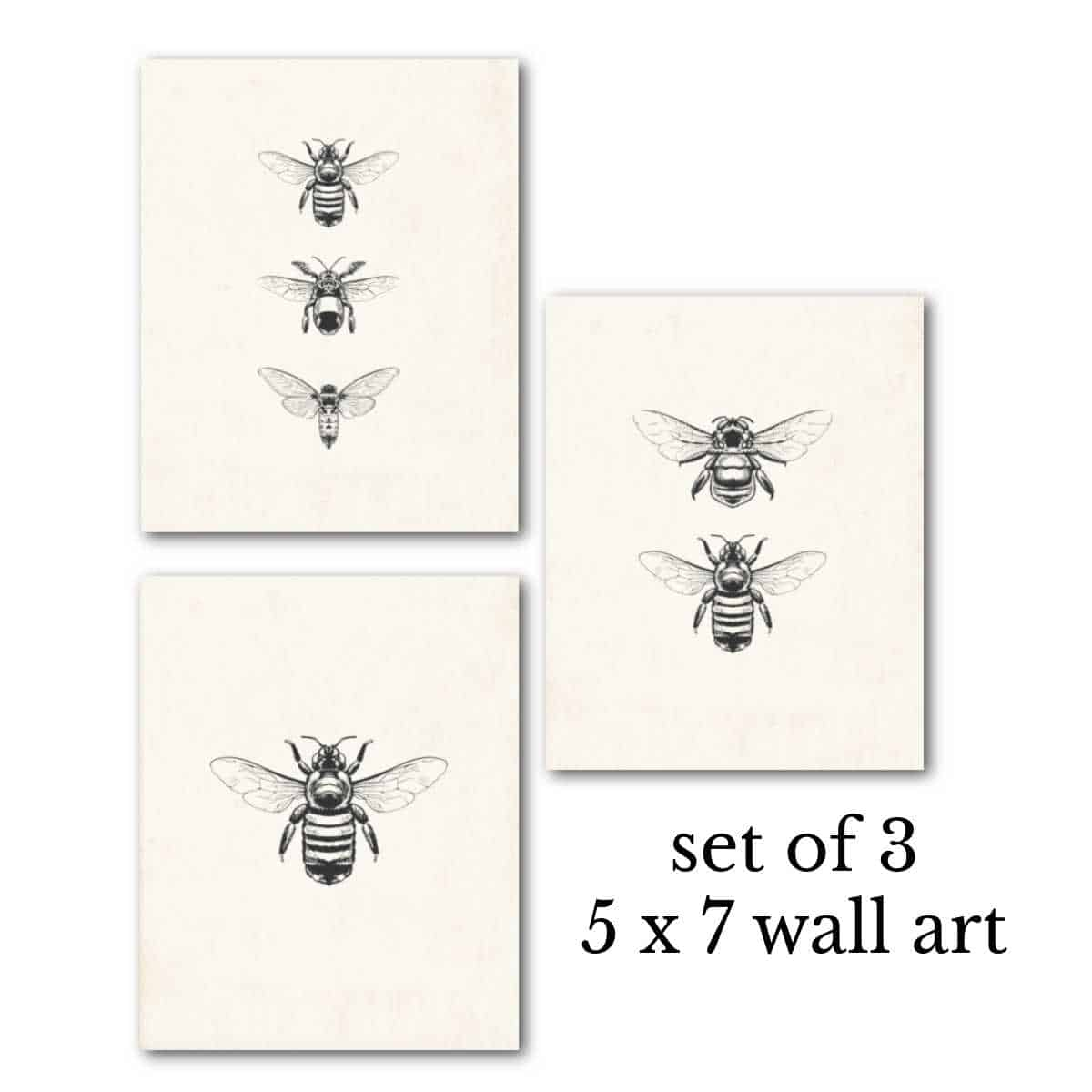 mock up of 3 bee printables on antique style paper