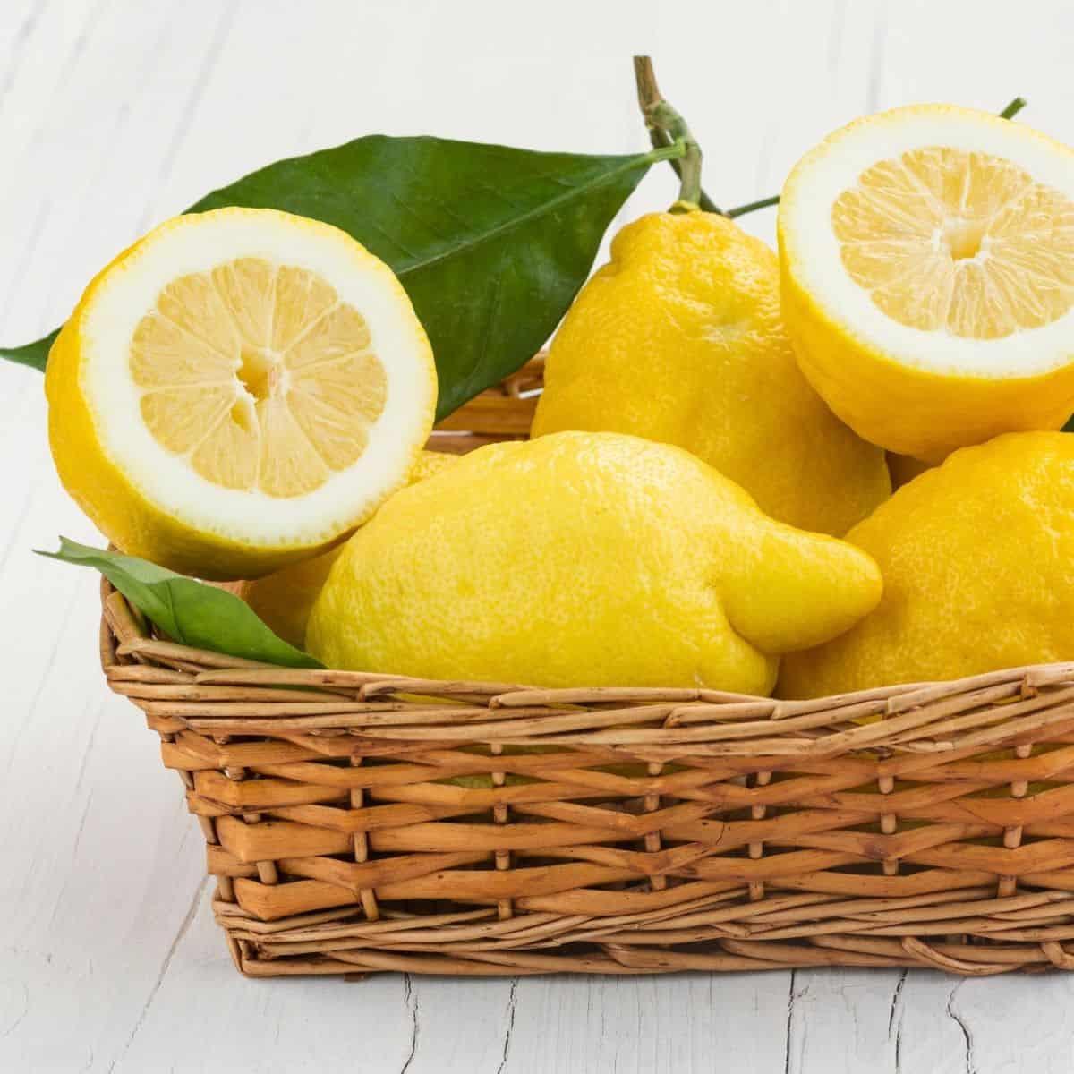 basket of lemons