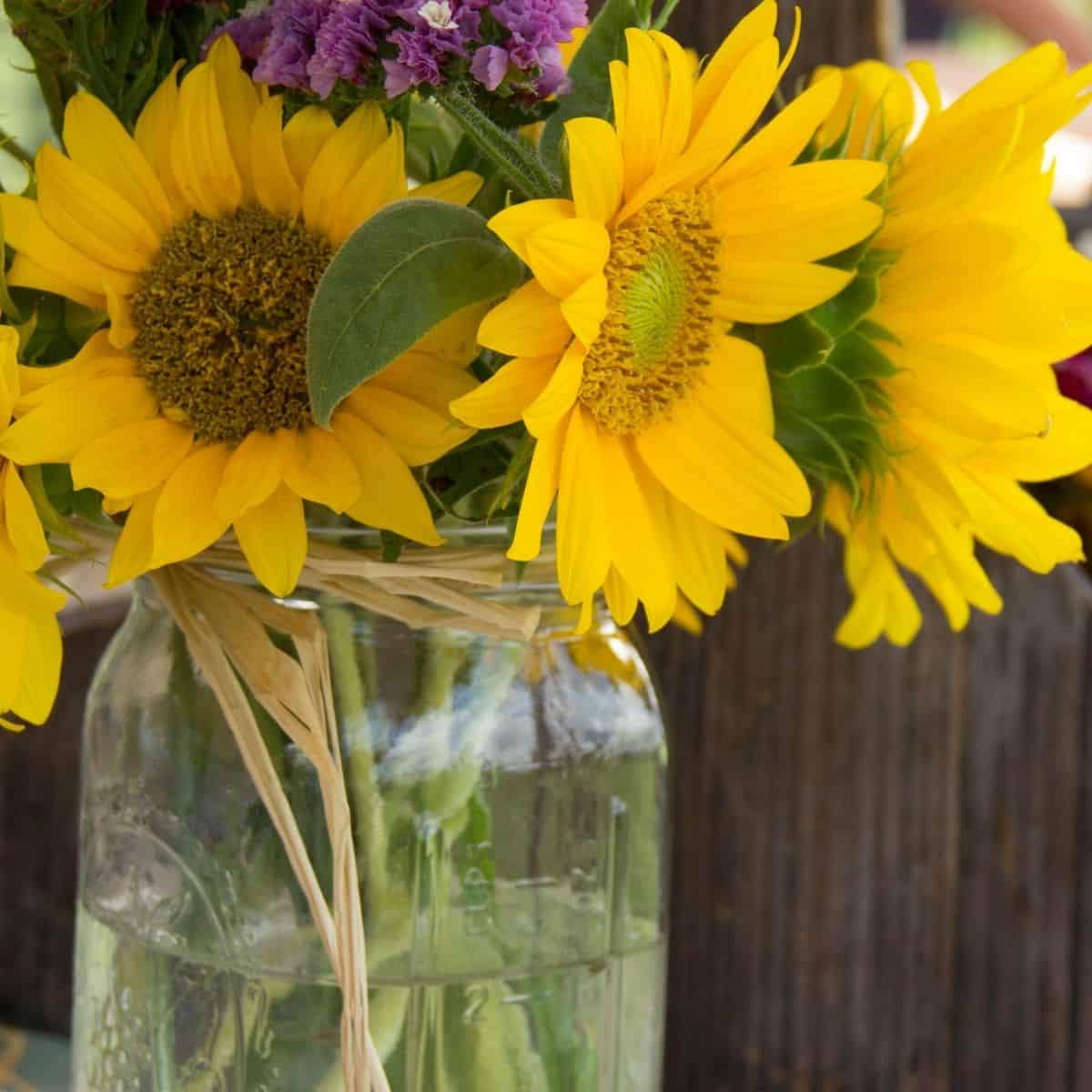 mason jar tied in rope with sunflowers