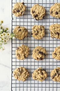 wire cooling rack with oatmeal raisin cookies