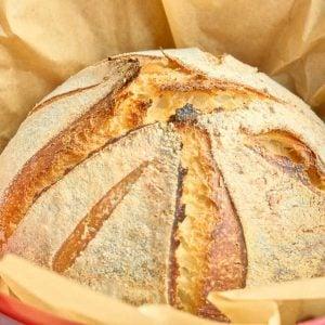 finished sourdough loaf in dutch oven
