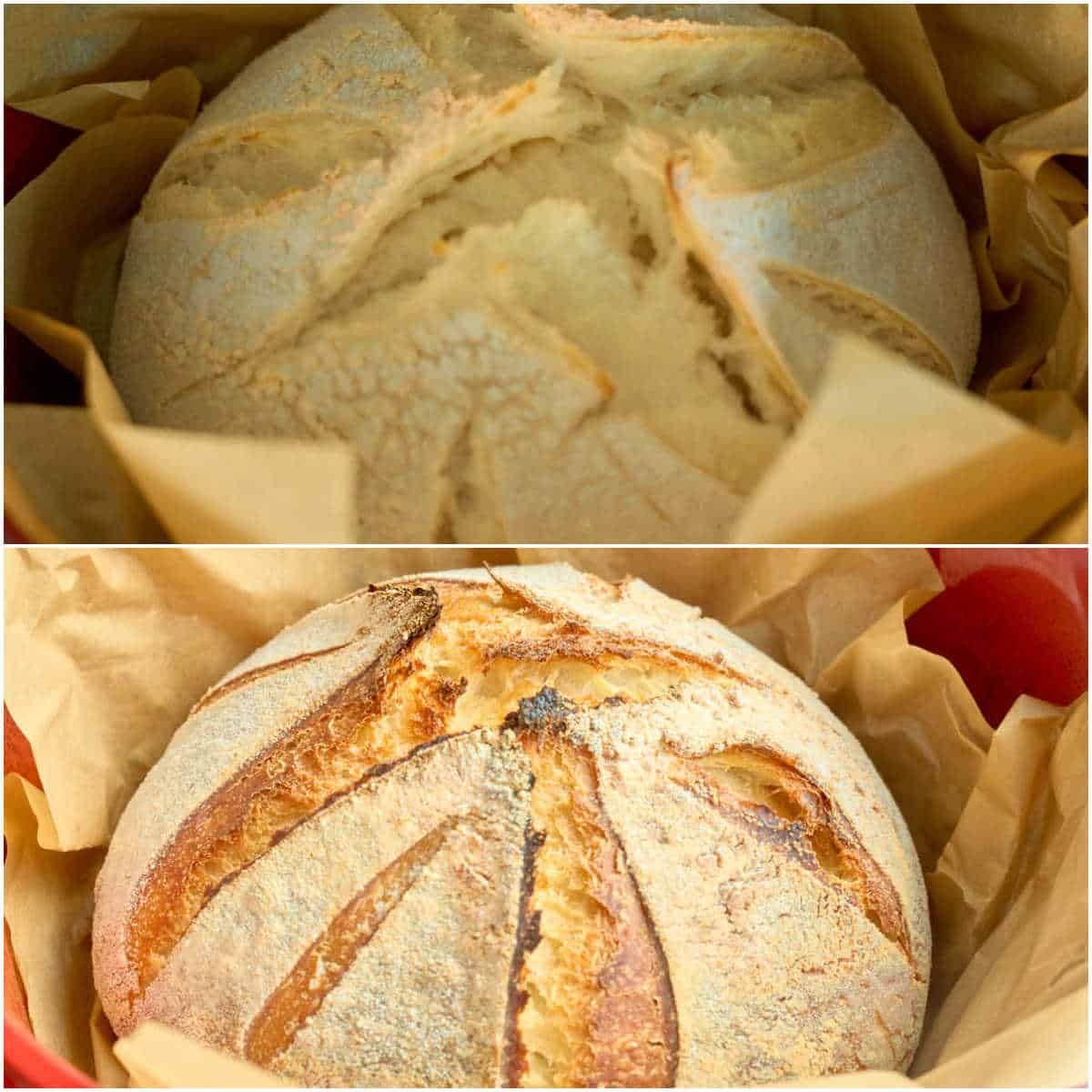 2. images showing no knead bread when  lid is removed then fully baked