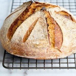 closeup of no knead sourdough boule