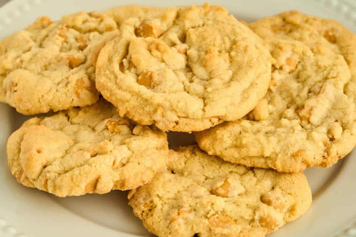 6 butterscotch cookies on white plate